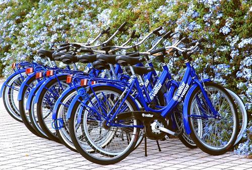 fahrrad, Gruppen, Biker, Motorradfahrer